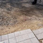 ブログ 社長Tのつぶやき③